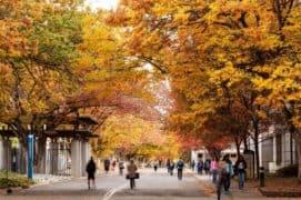 CSU Sacramento