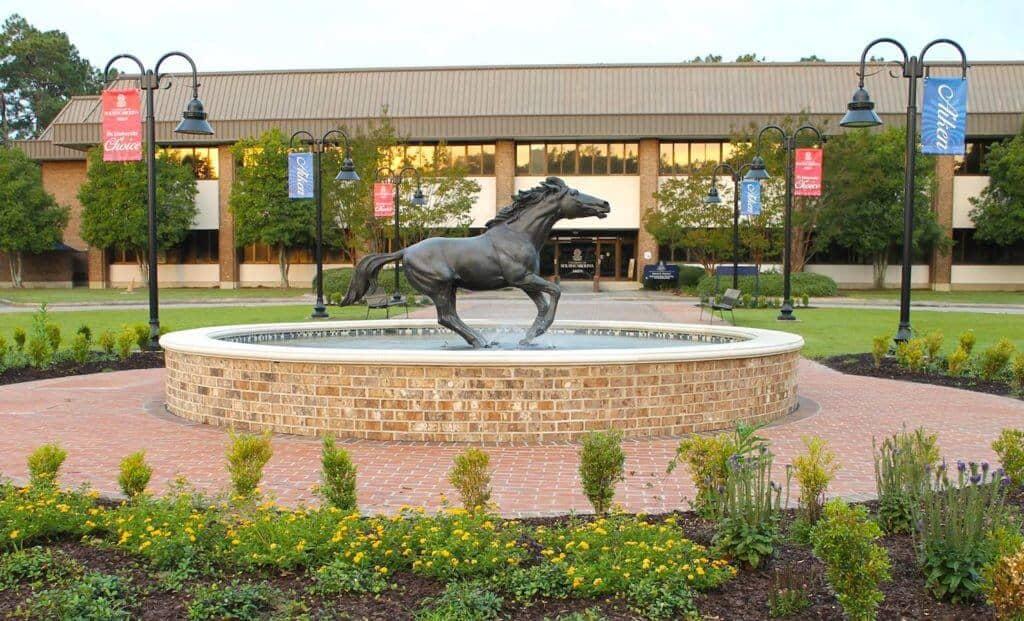 University South Carolina Aiken