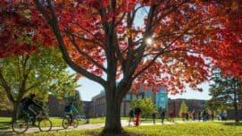 University Wisconsin Eau Claire