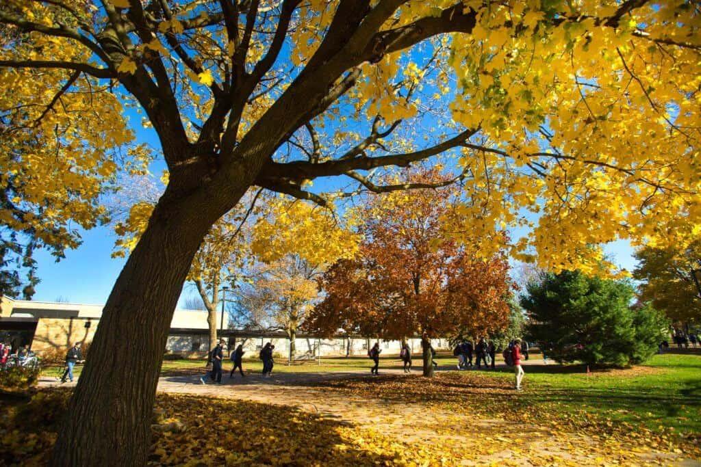 University of Wisconsin Platteville