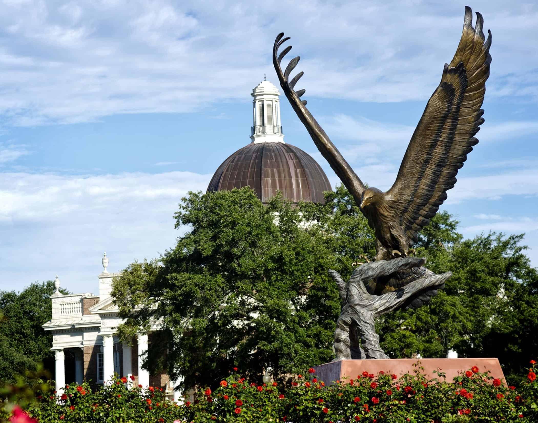 university southern miss