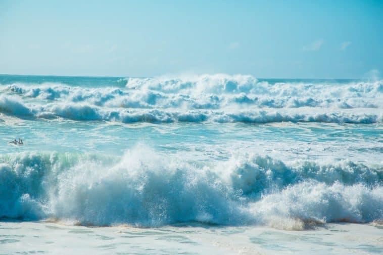 BYU Hawaii SUrf