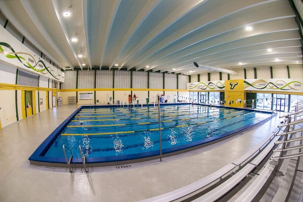 USF pool