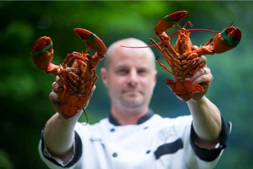 bowdoin lobsters