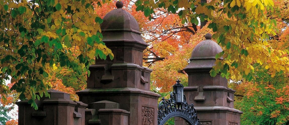 mount holyoke fall foliage