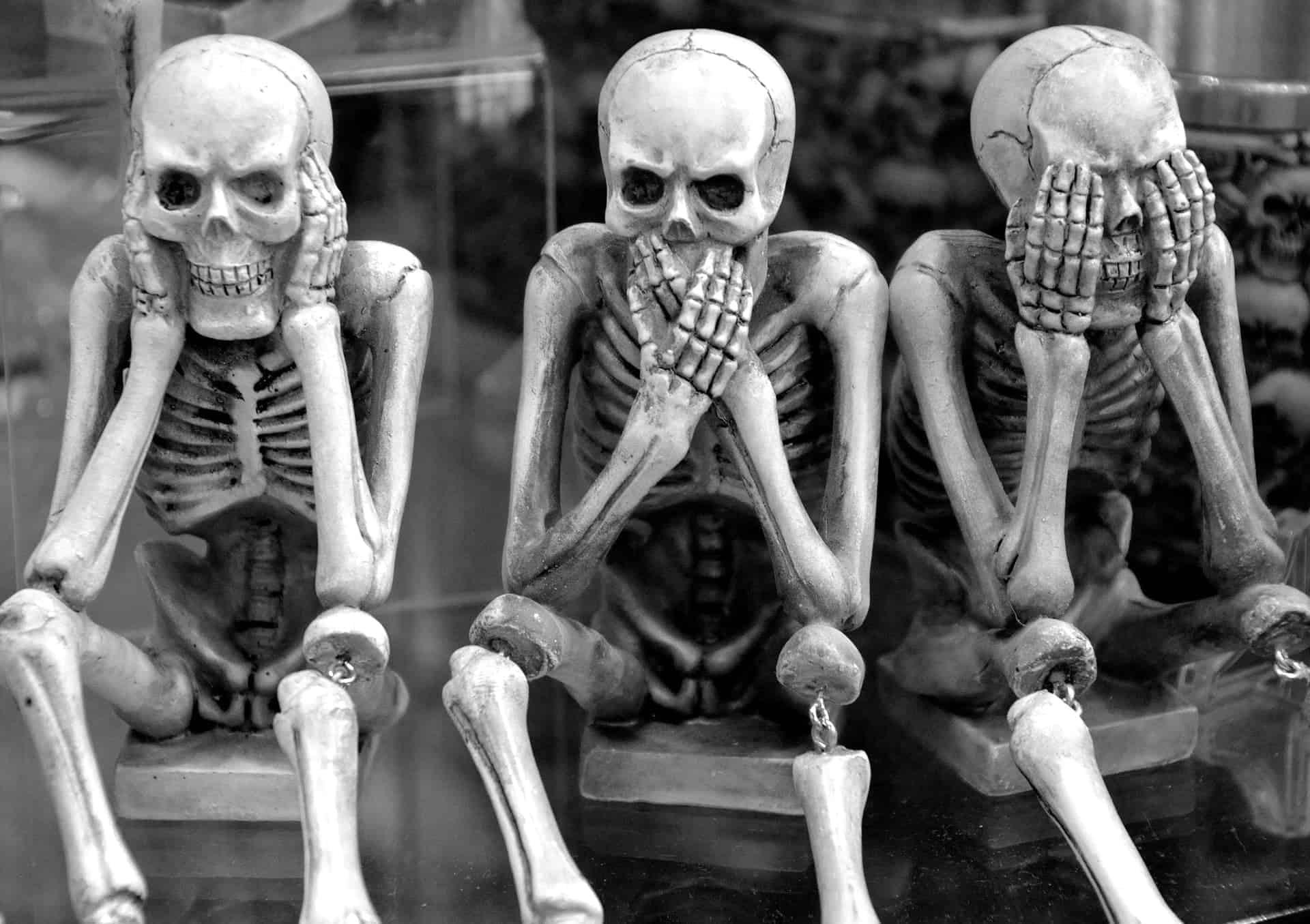 skeletons 3639984 1920