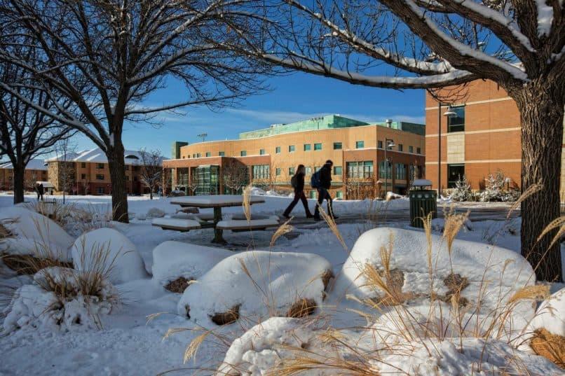Colorado Mesa University snow
