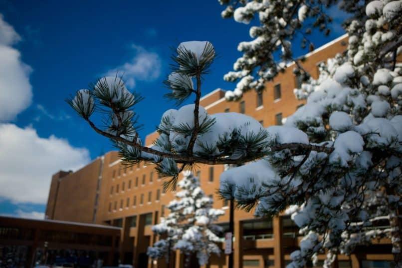 UBuffalo snowday