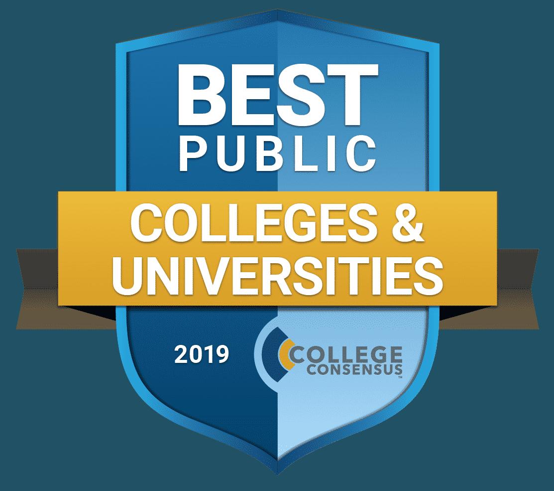 Best Public Colleges Universities 2019