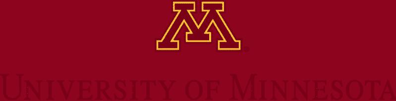 minnesota twin citites logo