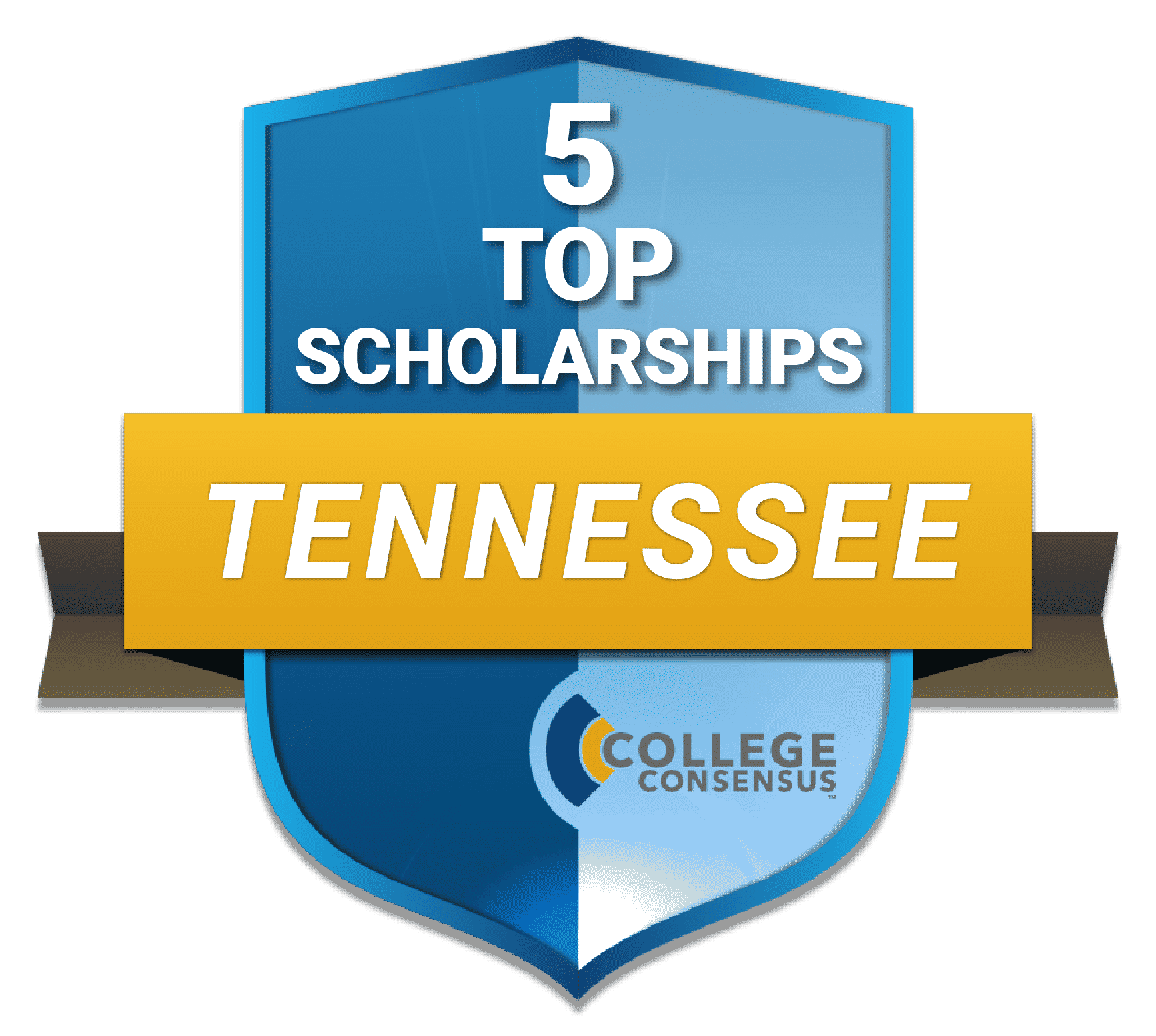 Consensus Ranked top 5 scholarshps STATES 41