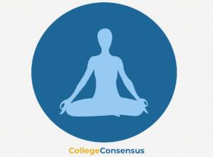 helth wellness icon