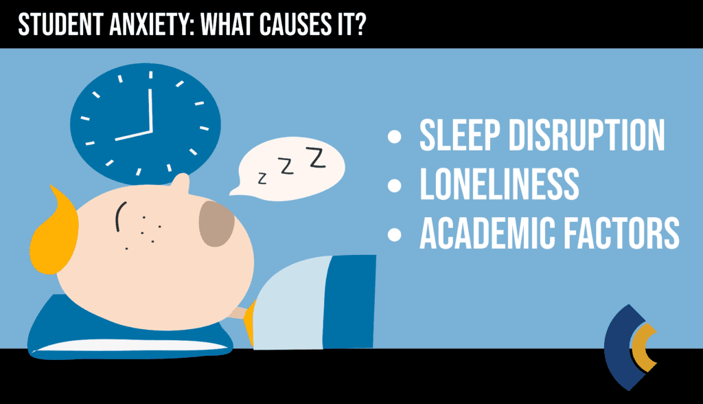 consensus student anxiety causes